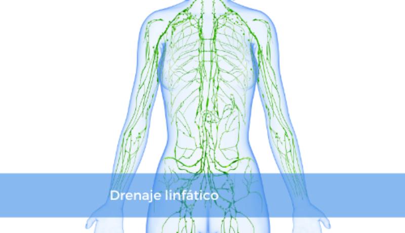 drenaje-linfatico-1